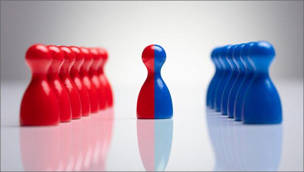 Successful Alliances: Building Firm-Level Capability